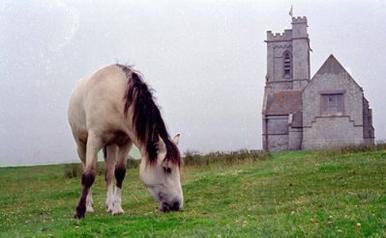 Un cheval rare: le Lundy