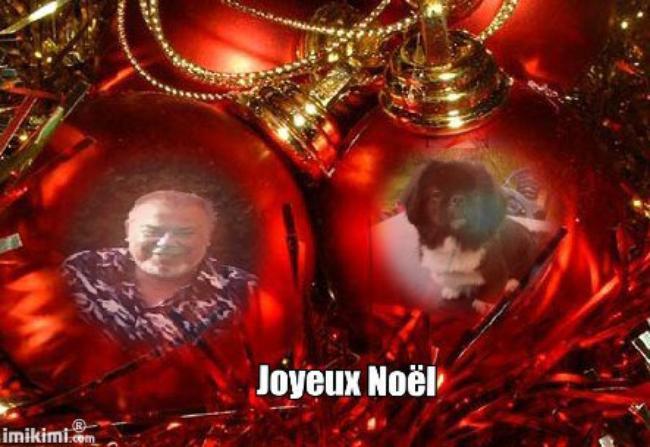 BONJOUR  MES AMIS  NOUS   SOMMES   LE    20   DECEMBRE   2016 ...C  EST  LA ST  THEOPHILE  ....ET  A LA ST  THEOPHILE.....IL NE FAUT PAS PERDRE LE  FIL....LOL...