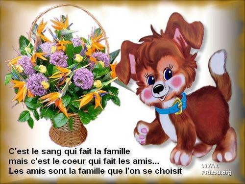 BONJOUR  MES  AMIS  NOUS  SOMMES  LE  SAMEDI   11   MARS 2017    C  EST  LA STE   ROSINE....ET   A LA  STE    ROSINE......ON GARDE  NOTRE   BONNE  MINE .......