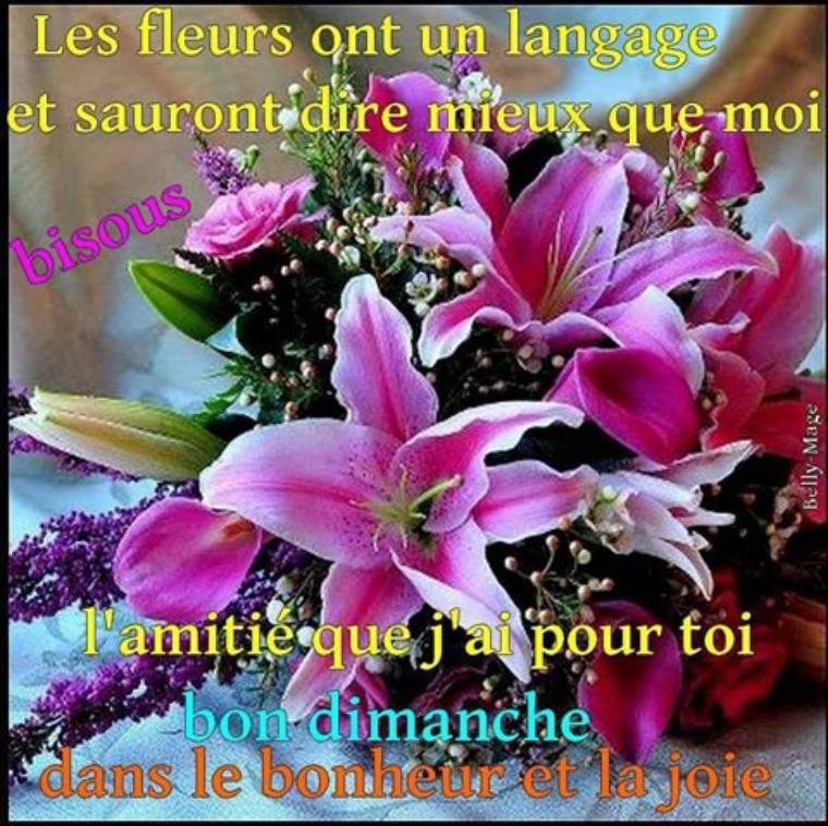 BONJOUR  MES AMISNOUS  SOMMES  LE DIMANCHE  09  AVRIL....C  EST  LE  DIMANCHE   DES  RAMEAUX    ...