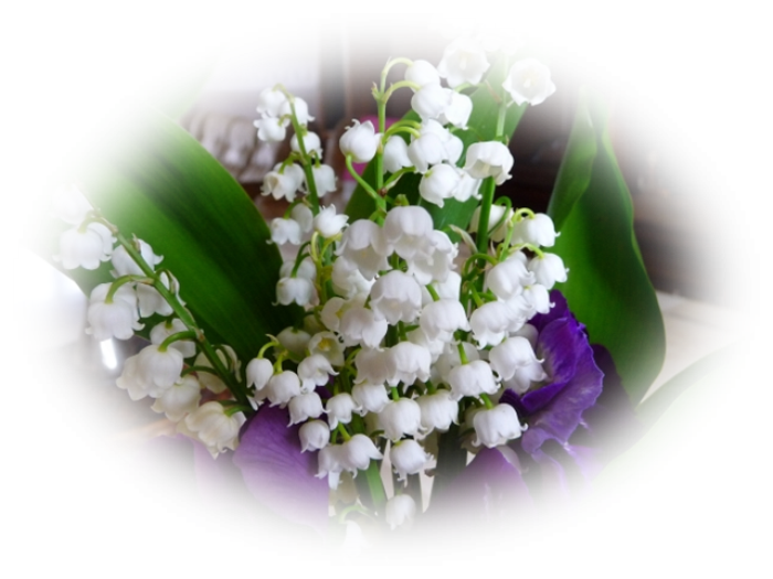 BONJOUR  MES   AMIS   NOUS  SOMMES   LE   DIMANCHE    30  AVRIL  2017........WEEK  END   DU  1 ER MAI......