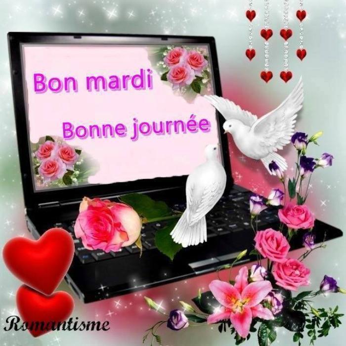 BONJOUR   MES   AMIS    NOUS  SOMMES  LE   MARDI  11  JUILLET   2017   C  EST   LA    ST   BENOIT    ET   A  LA  ST  BENOIT  ...ON  S  OFFRE  UN  JOLI  GATEAU    AUX  NOIX......