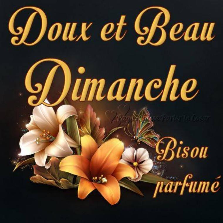 BONJOUR  MES  AMIS  NOUS  SOMMES  LE   DIMANCHE  28  JANVIER  2018  ...C  EST  LA  ST THOMAS D AQUIN ....
