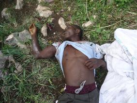 Sud'est – Environnement : Opération sanglante par la police au Parc La visite