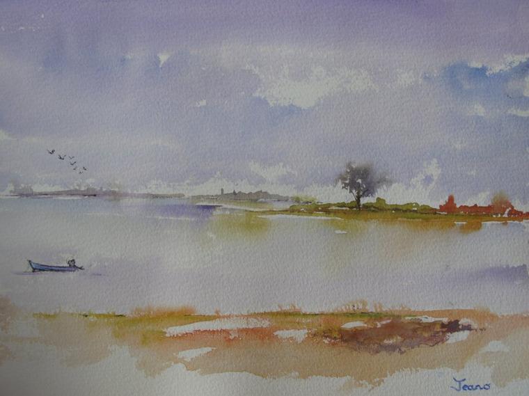 Golfe du Morbihan: Les bernaches sont de retour