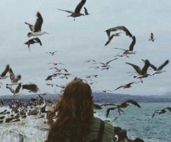 """""""Tiens, tu as fais tomber la dernière chance qui te restait avec moi."""""""