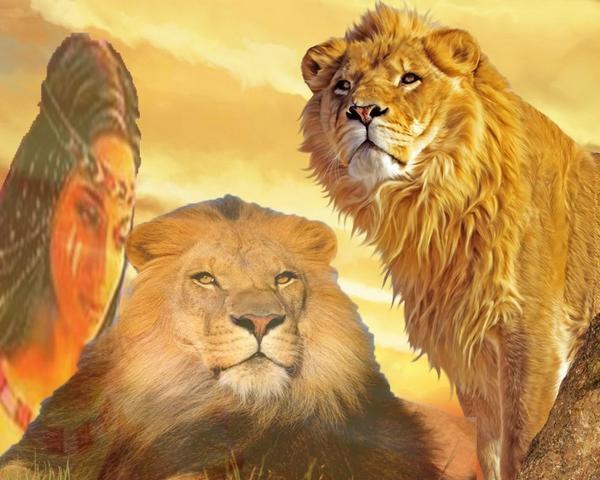 djlicorne&lion pas moral