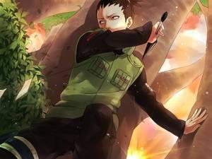Shikamaru - Ninjas
