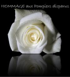 Hommage aux Pompiers, Gendarmes, Policiers, Militaires, personnes du SAMU disparus...