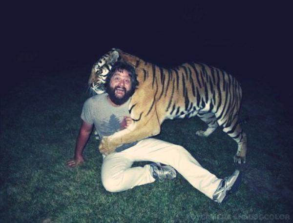 Les tigres adorent le poivre, ils détestent la cannelle !