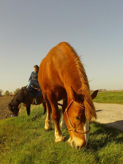 * 25 Avril 2010 * Balade au fil de l'eau avec Mi-Loup & Kikou *