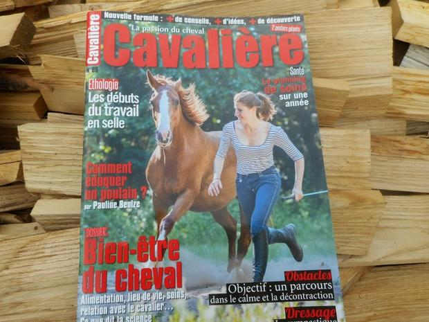 * Magazines *