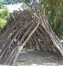 Chapitre 10 : Cabanes dans les bois ♥