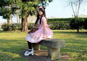 Sakura présentation