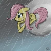 The leaving Fluttershy [Chapter 1 : My childhood]
