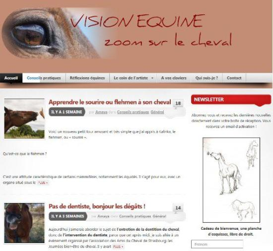Vision Equine.