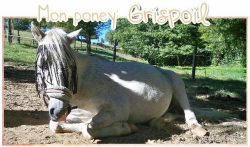 Mon poney: Grispoil.
