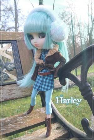 Ma jolie Harley ♥