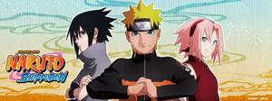 Anime / Manga : Naruto