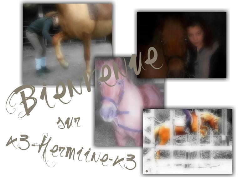 Hermine & Hind