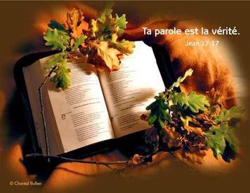 """JESUS DISAIT A SES DICIPLES (Luc 6 - 27) """" AIMEZ VOS ENNEMIS - FAITES DU BIEN A CEUX QUI VOUS HAISSENT. - BENISSEZ. NE MAUDISSEZ PAS... """""""