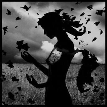 La perte. Nom féminin singulier : fait de perdre, d'avoir égaré;  privation de quelque chose que l'on possédait; deuil, séparation; mauvais usage, gaspillage; défaite, insuccès; ruine;  fait de disparaître;  fuite, écoulement, déperdition; anéantissement, mort.