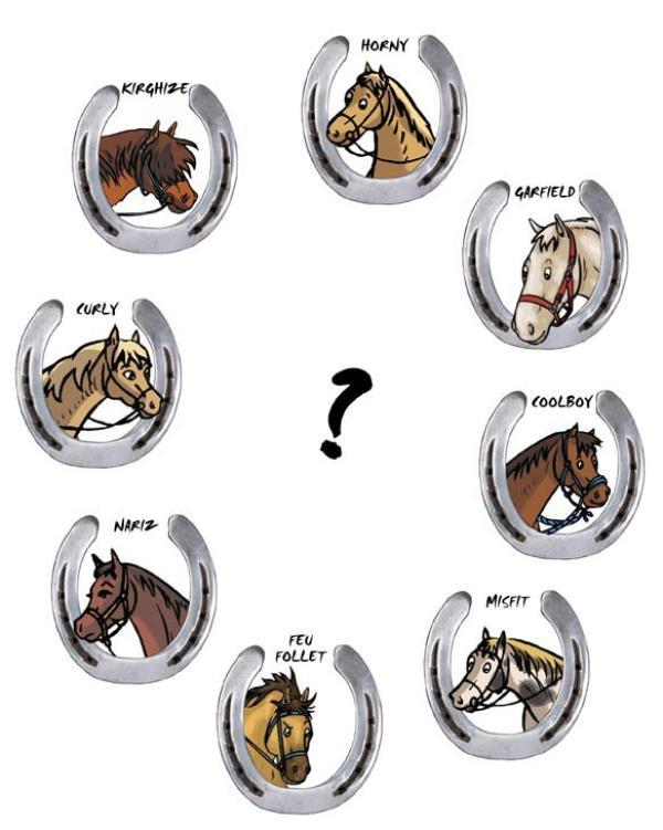 Et toi, quel cheval préfères-tu ?