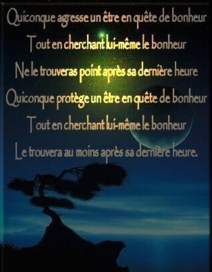 """"""" Le Bonheur """" ... &  """" Amitié """" ..."""