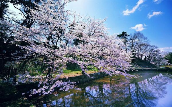 Liste de mes livres sur et autour du Japon. Londres s'y mêle aussi.