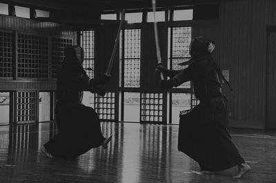 Traditions 2 : Sumo et autres arts martiaux