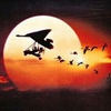 Fly away home theme