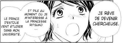 Fiche Manga : Private Prince - Le Coffret Intégral Collector