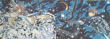 Goodie  Tsubasa Réservoire Chronicle - Divers