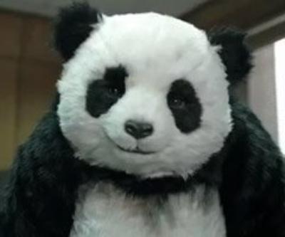 Na jamais dire non au panda et à Law !!!