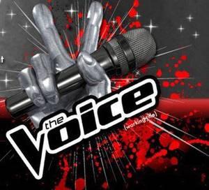 RTBF : Les coaches de « The Voice Belgique » sont connus !!!
