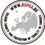 Brussels Events Support - BES soutient la BSPCA, avec GOLD FM 106.1 à BXL