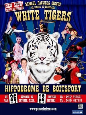 """""""White Tigers"""", le tout nouveau spectacle du Cirque Samuel Pauwels"""