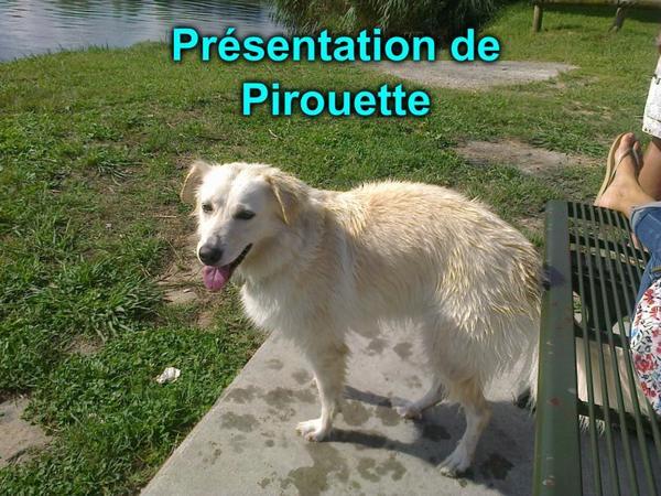 Présentation de Pirouette