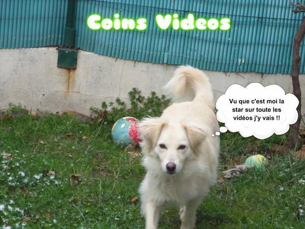 Coins Vidéo