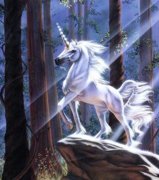 OS concours de ErzaFyctions : La prophétie des fées