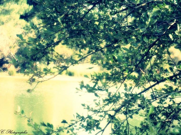 ♥ Sois belle et sois triste . Les pleurs, ajoutent un charme au visage, comme le fleuve au paysage ... ♥