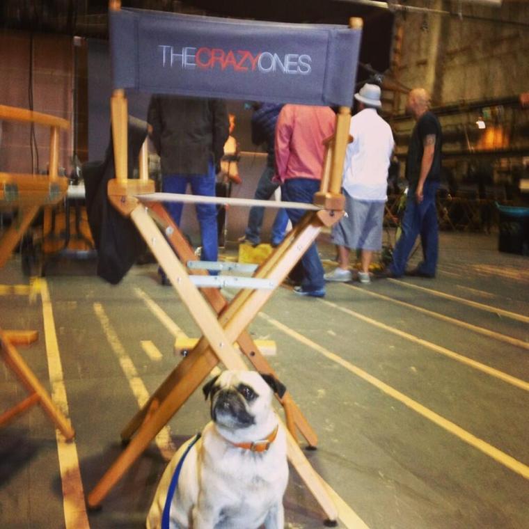 """Le tournage du pilot de The Crazy Ones """" aurait débuté plutôt + première rewiew du script  !"""