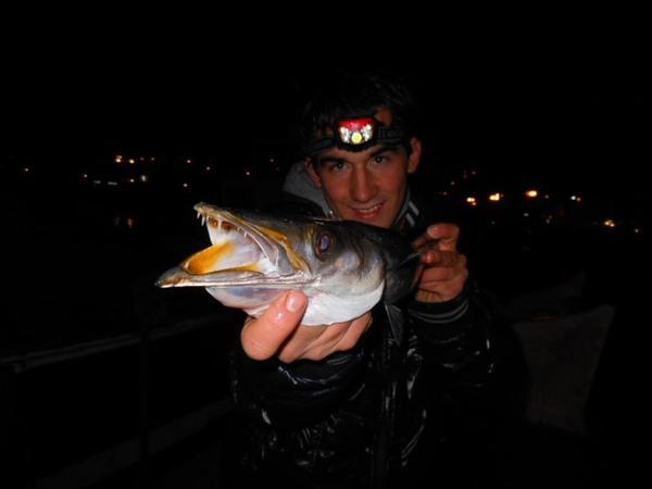 Pêche du 18 janvier 2012