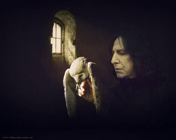 Parce que sans lui, la saga n'aurait pas été la même : Mon petit Severus.