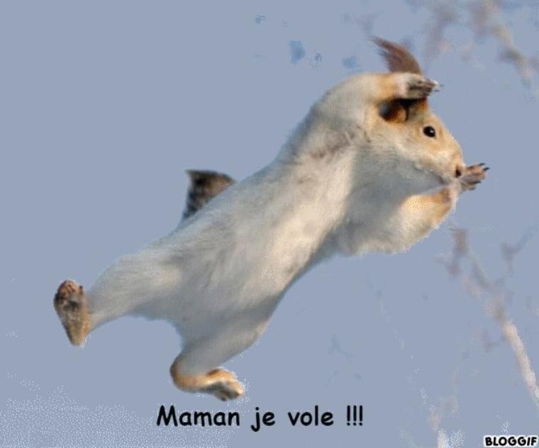 Yvelines : laissé seul devant la télé, un enfant de 5 ans saute par la fenêtre