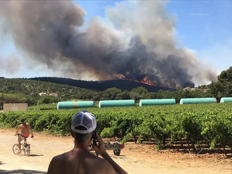 Reprise de feu à Gaou, nouvelle évacuation à Bormes-les-Mimosas A La Croix-Valmer, après l'incendie, « une catastrophe écologique »
