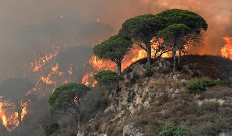 Sicile : des pompiers volontaires allumaient des feux pour être rémunérés