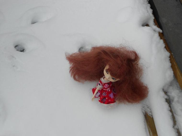Dans la neige-1