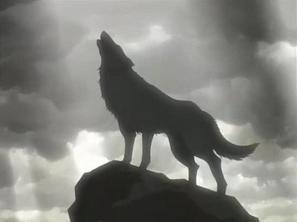 Le rakuen, réserver au loup . . .