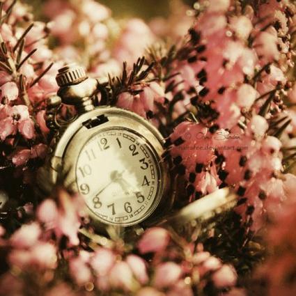 """"""" Mon passe temps favori,c'est laisser passer le temps, avoir du temps, prendre son temps, perdre son temps, vivre à contretemps""""  Françoise Sagan"""